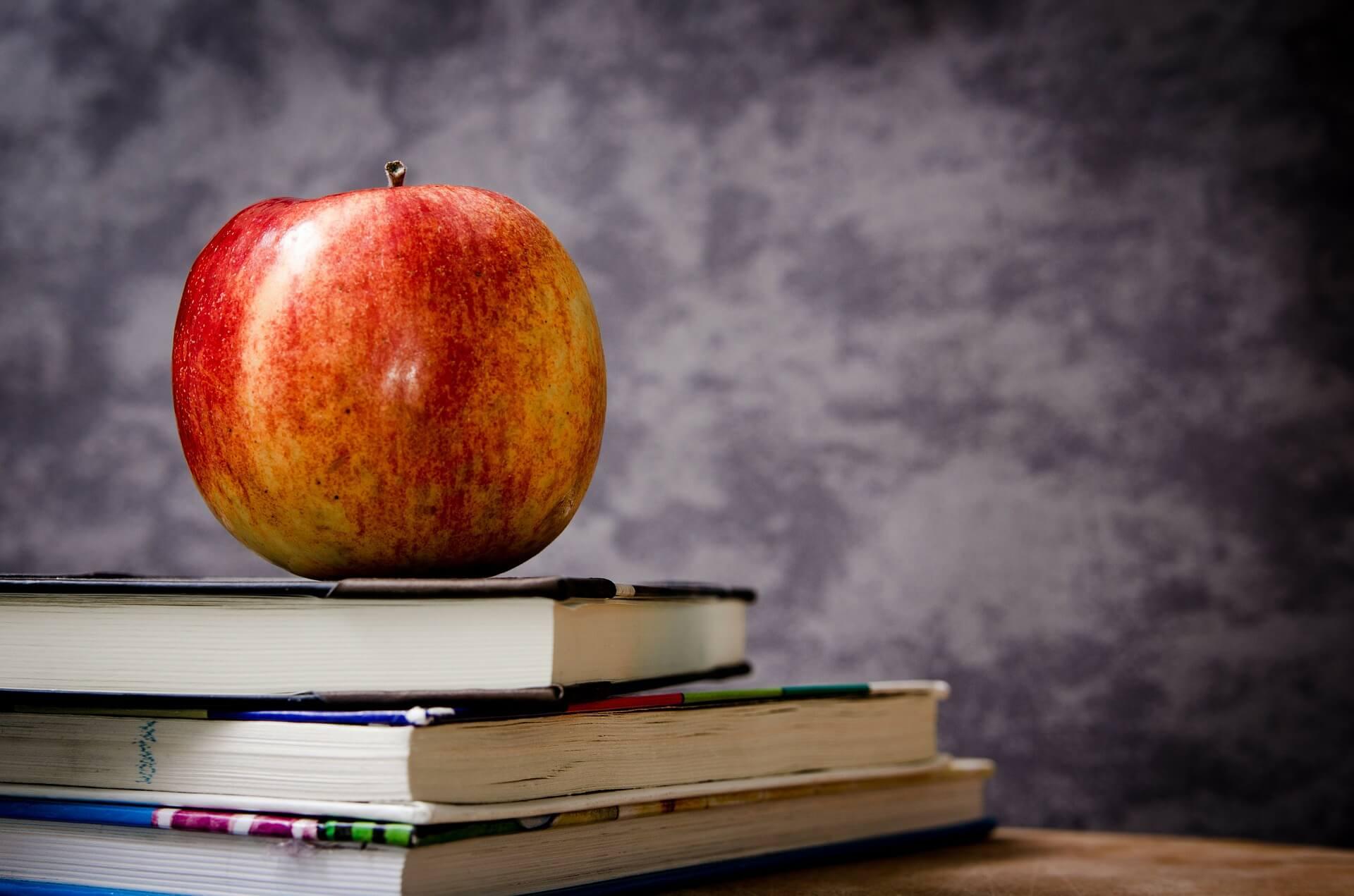 Прикарпатські навчальні заклади отримують більше фінансування, ніж у попередні роки (відео)